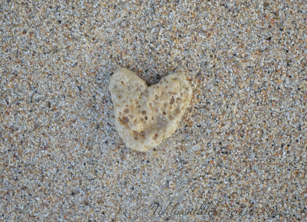A Heart for My Beloved