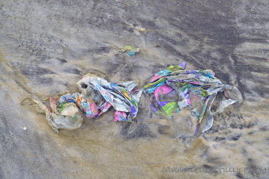 Fallen Flotsam